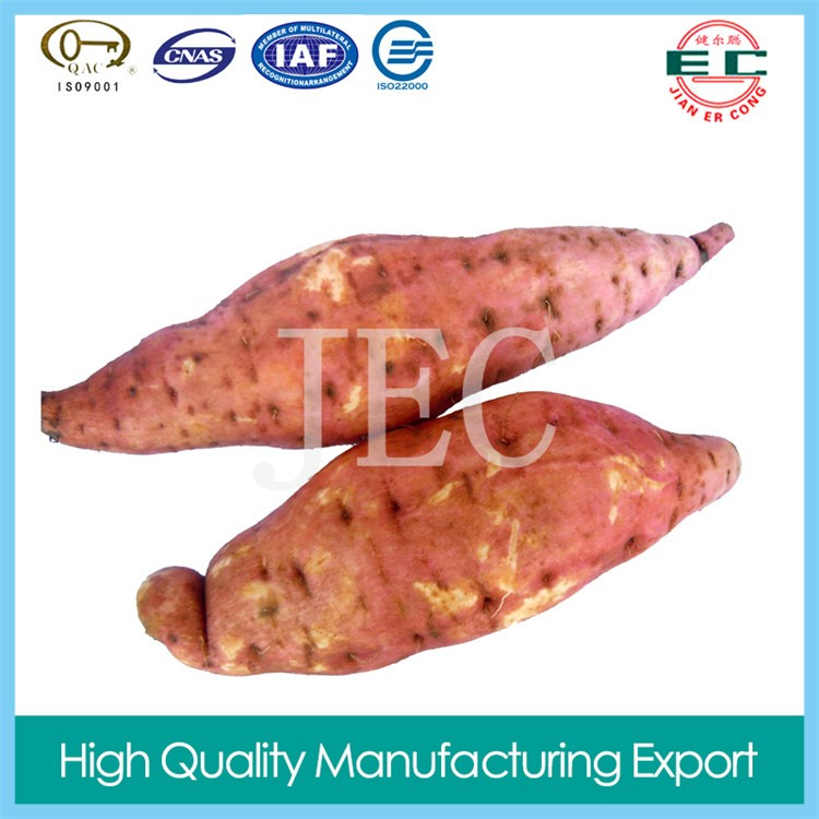 organic vegetables  fresh  sweet potato